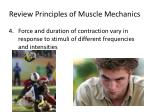 review principles of muscle mechanics2