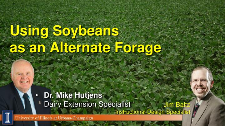 using soybeans as an alternate forage n.