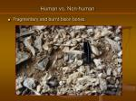 human vs non human16
