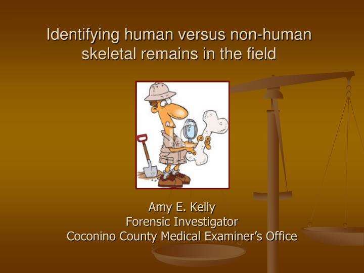 identifying human versus non human skeletal remains in the field n.