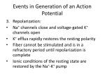 events in generation of an action potential3