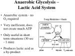anaerobic glycolysis lactic acid system