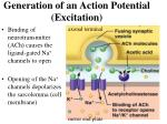 generation of an action potential excitation