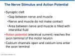 the nerve stimulus and action potential2