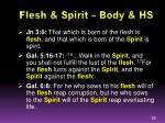 flesh spirit body hs