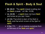 flesh spirit body soul