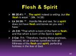 flesh spirit