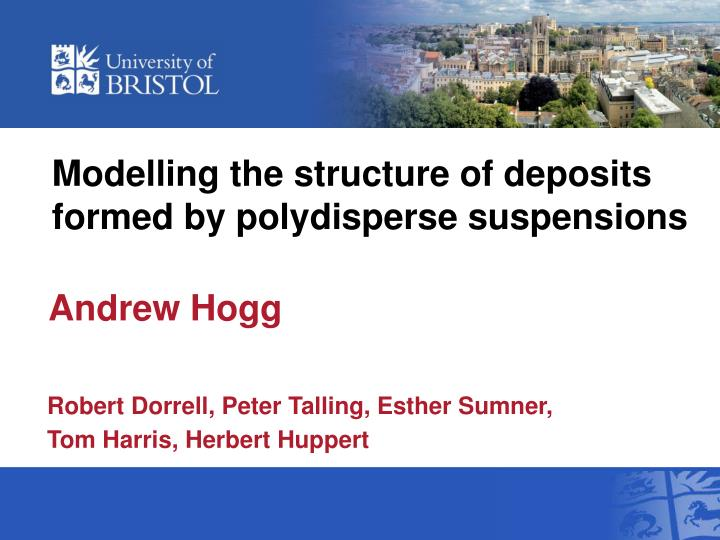 modelling the structure of deposits formed by polydisperse suspensions n.