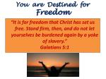 you are destined for freedom
