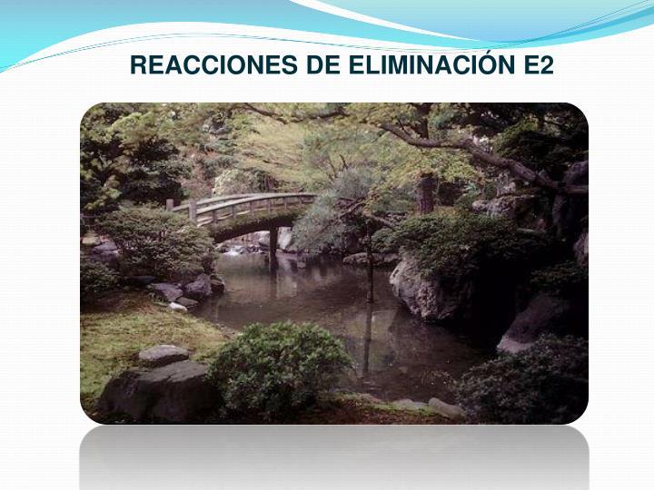 REACCIONES DE ELIMINACIÓN E2