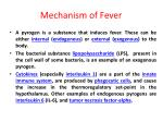 mechanism of fever1