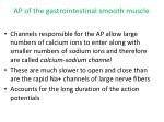 ap of the gastrointestinal smooth muscle