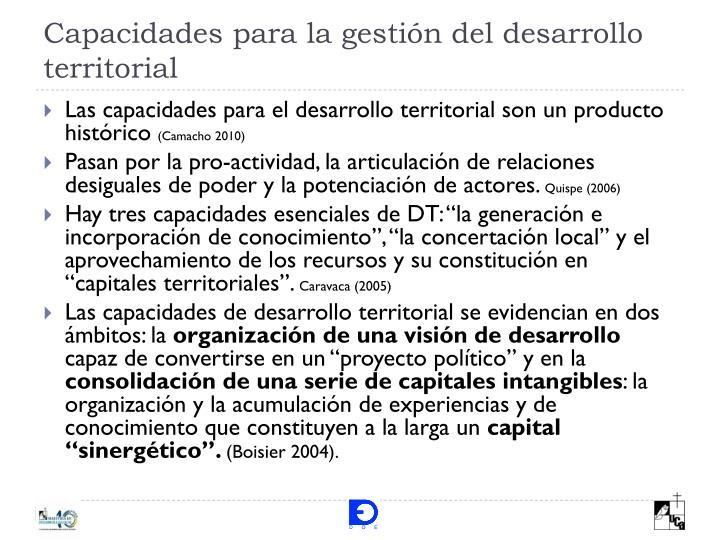 Capacidades para la gestión del desarrollo territorial