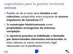 capacidades para la gesti n territorial s ntesis1