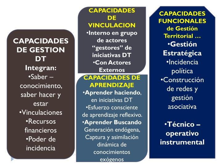 CAPACIDADES FUNCIONALES de Gestión Territorial …