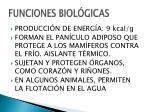 funciones biol gicas
