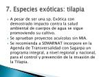 7 especies ex ticas tilapia