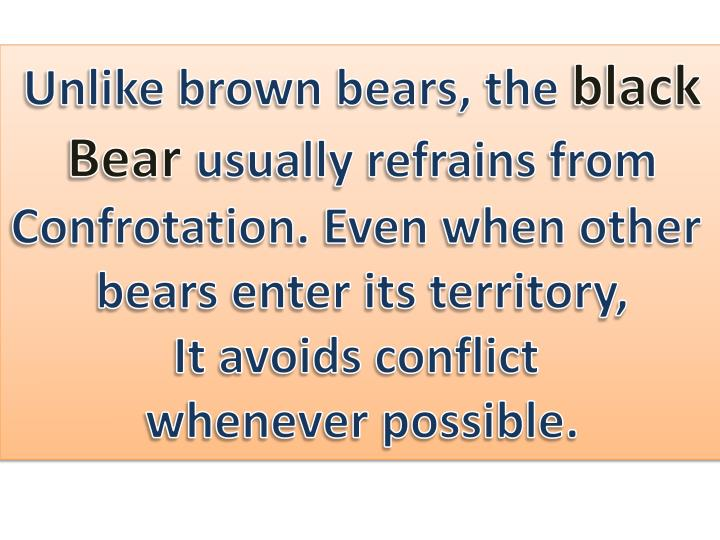 Unlike brown bears, the
