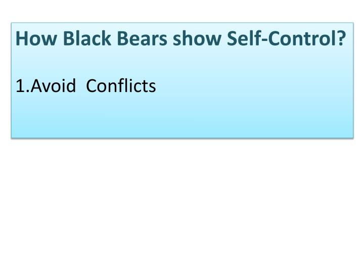 How Black Bears show Self-Control?