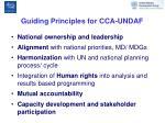 guiding principles for cca undaf