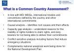 what is a common country assessment