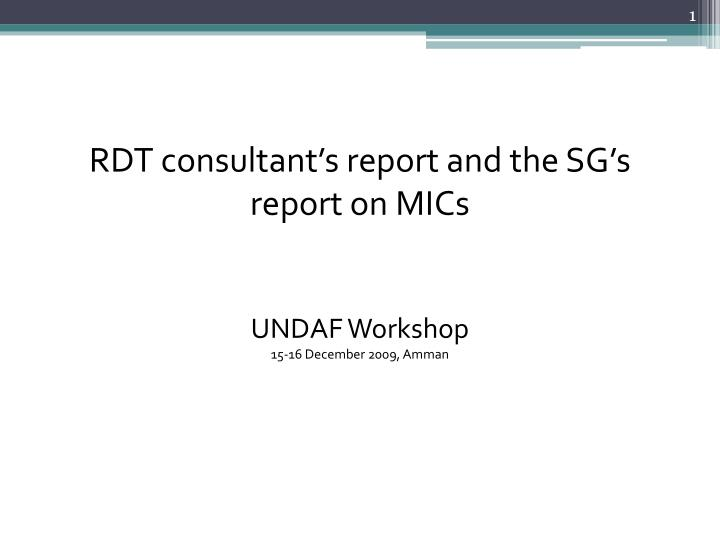 rdt consultant s report and the sg s report on mics undaf workshop 15 16 december 2009 amman n.