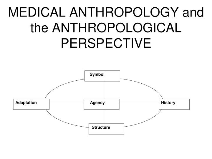 medical anthropology and the anthropological perspective n.