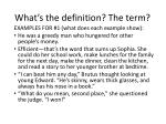 what s the definition the term