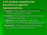 4 02 analyze essential life functions of specific representatives