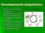 developmental adaptations
