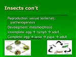 insects con t