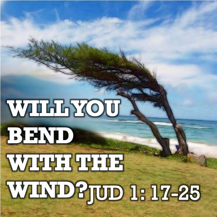 will you bend with the wind n.