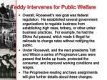 teddy intervenes for public welfare1