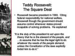 teddy roosevelt the square deal