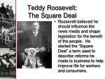 teddy roosevelt the square deal1