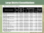 large district consolidations