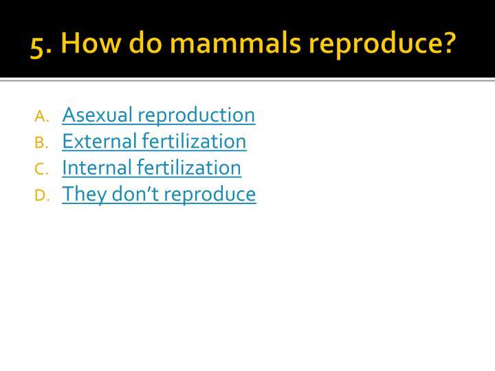 5. How do mammals reproduce?