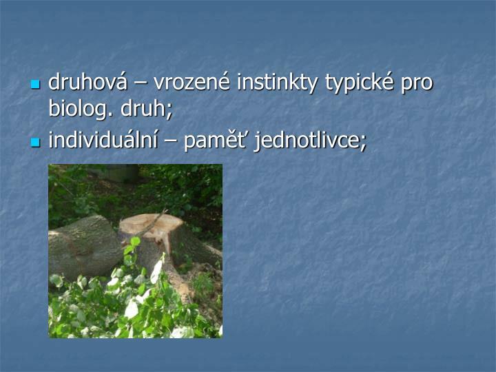 druhová – vrozené instinkty typické pro biolog. druh;