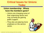 critical issues for unions today2