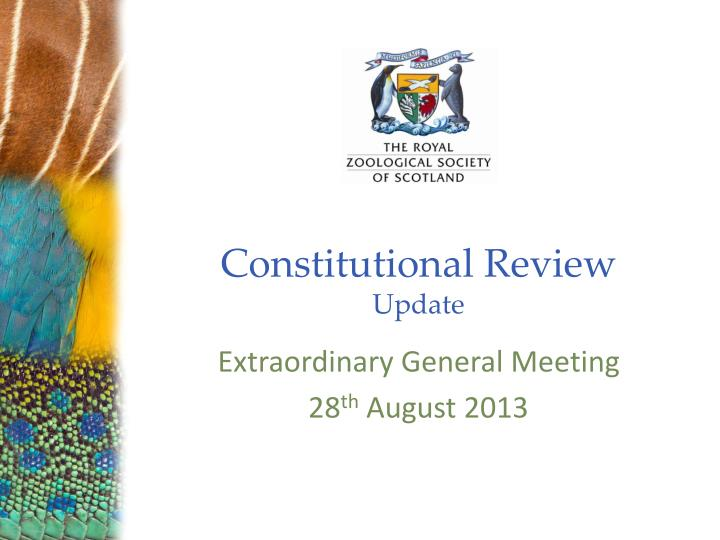 constitutional review update n.