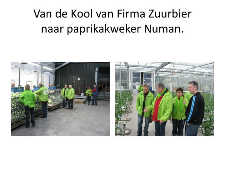 Van de Kool van Firma Zuurbier