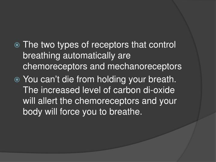 The two types of receptors that control breathing automatically are