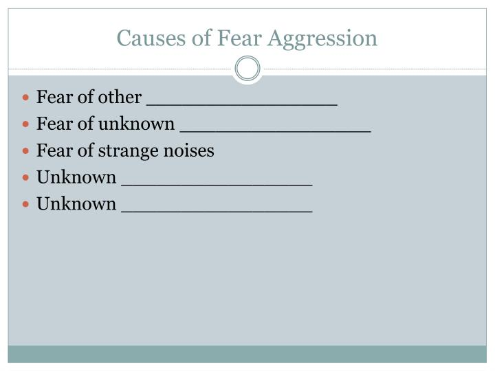 Causes of Fear Aggression