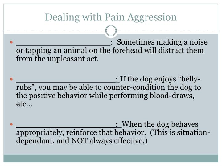 Dealing with Pain Aggression