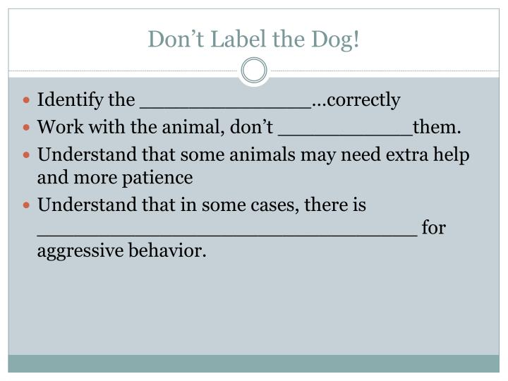 Don t label the dog