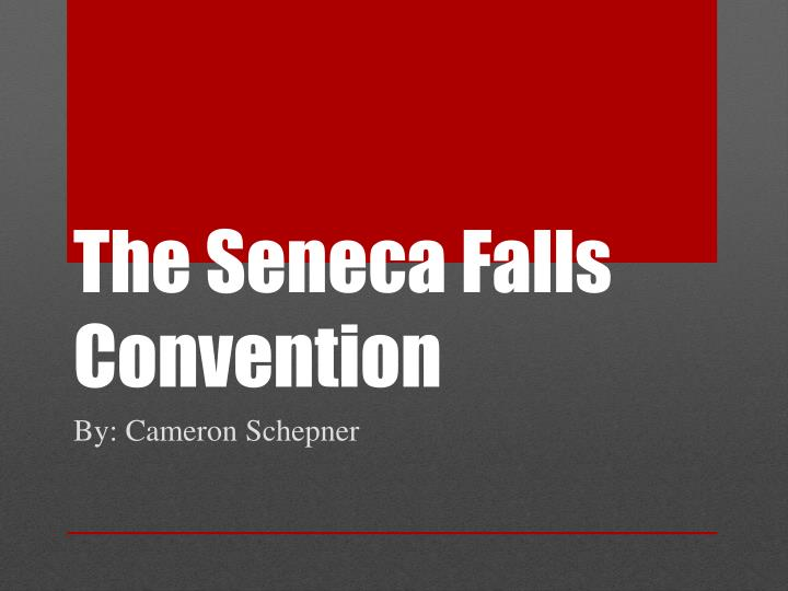 the seneca falls convention n.