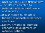 what does the united nations do
