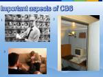 important aspects of cbs
