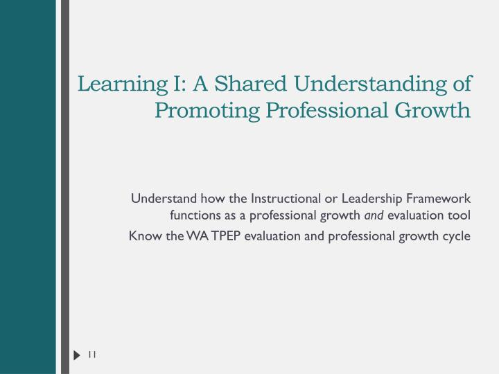 Learning I: A Shared Understanding of Promoting Professional Growth