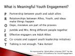 what is meaningful youth engagement